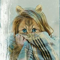 remixed kitten rainyday coldoutside cats
