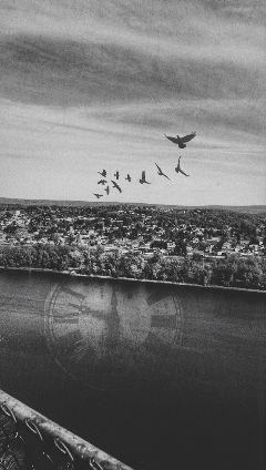 freetoedit doubleexposure clock landscapes blackandwhite