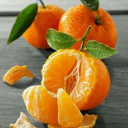 nature fruit colouful