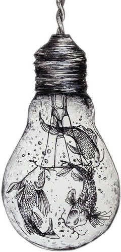 fish lamp sketched freetoedit