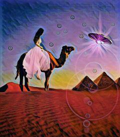 desertbeauty camelride pyramids ufo creators freetoedit