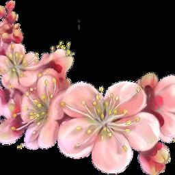 ftestickers flowers