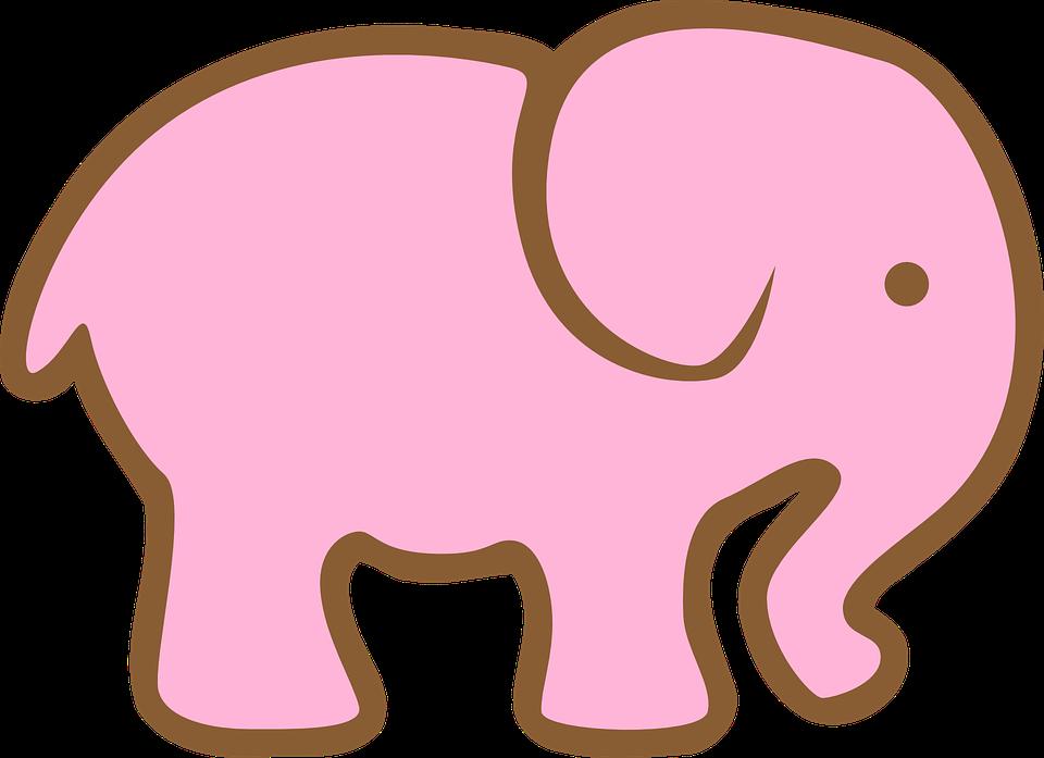 #elephantpink #elephant #haillh #haillegiónholk #abilh