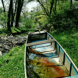 freetoedit colorful photography nature river