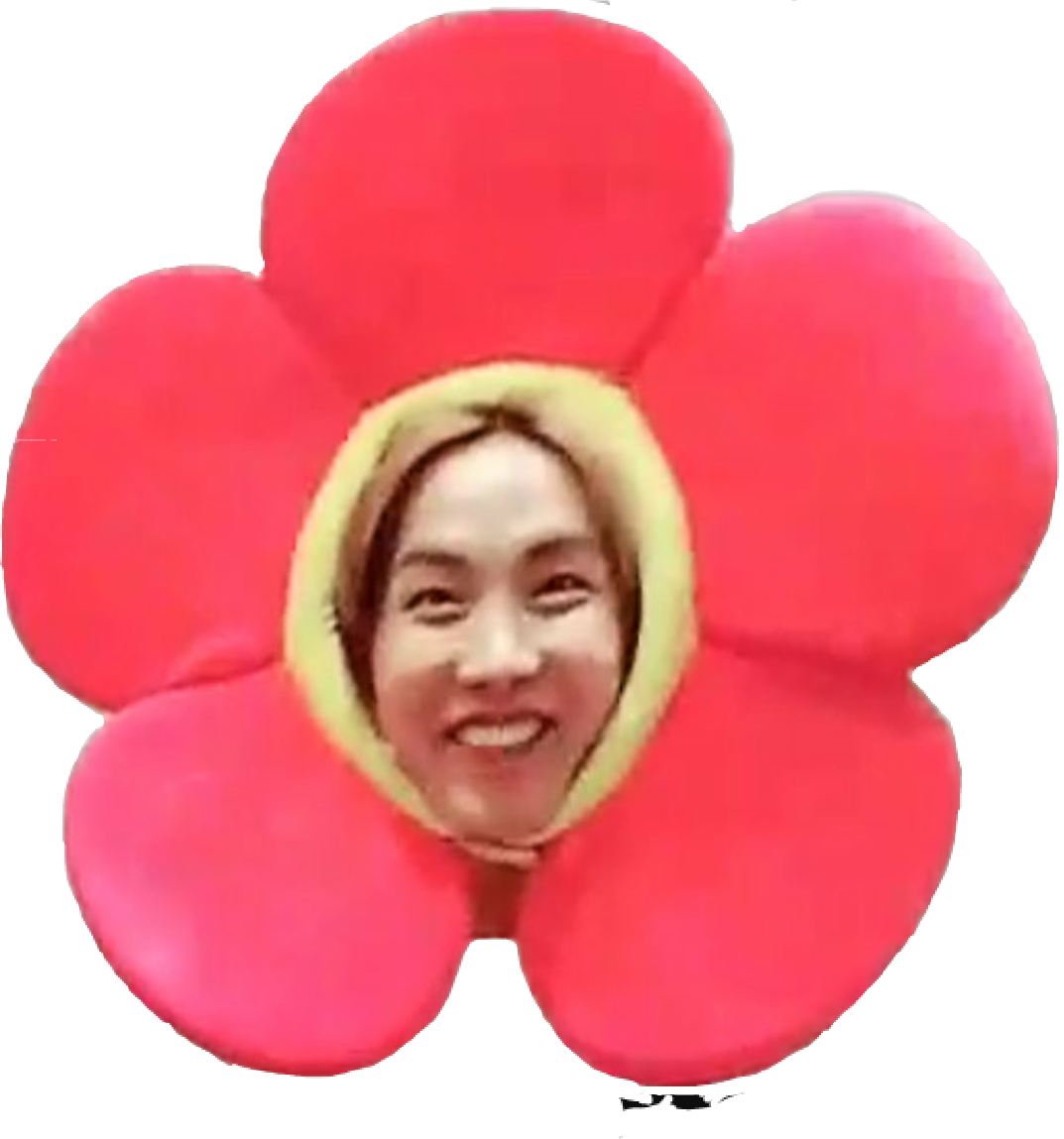 jhope flower bts jhopebts jflowers edit funny funny face clip art images funny face clipart