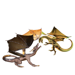 dragons dragonfight