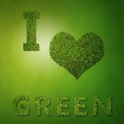 greenlove lovegreen green tree freetoedit