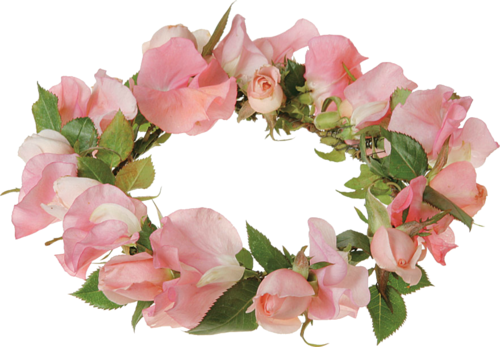 #png #edit#tumblr #overlay ##FreeToEdit #flowers