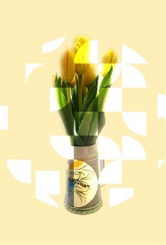 freetoedit madewithpicsart myedit tulips