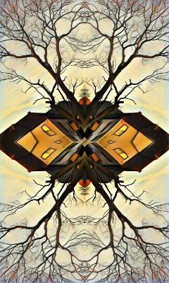 freetoedit mirrored artistic architecture nature