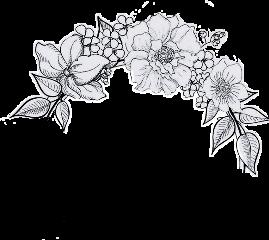 цветы чернобелое////// flower blak-and-white frame