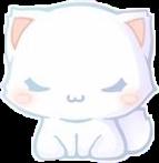 cute kawaii kitty kitten freetoedit
