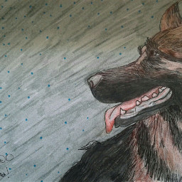 freetoedit dog drawing traditionaldrawing commissionwork dpcpainting