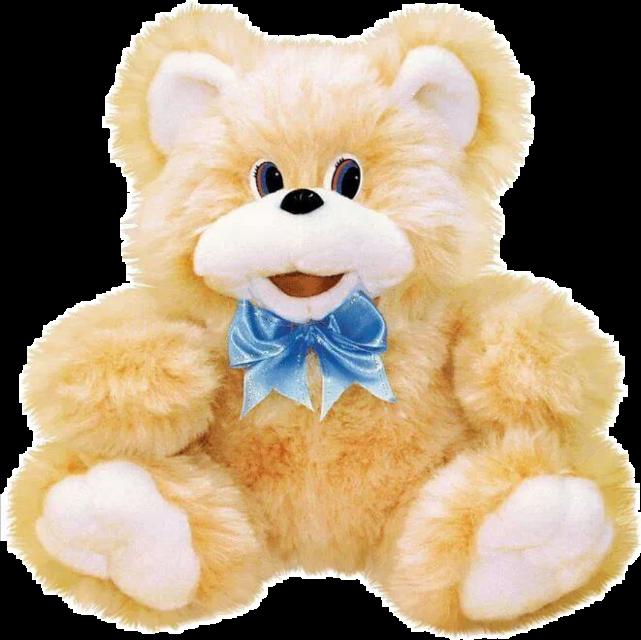 #bear #teddy #teddybear