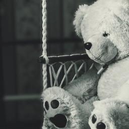 teddybear freetoedit blackandwhite