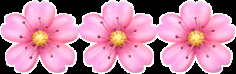emojis flower flowers flores