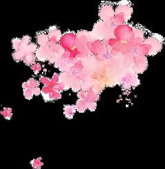 pinkflowers flowers floral ftestickers freetoedit