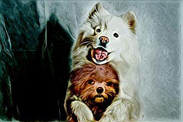 freetoedit dogs magiceffect cutnessoverloadremix