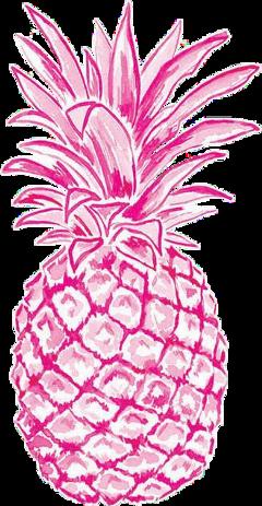 fruit pink pineapple favorite sticker
