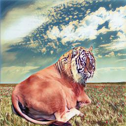 freetoedit animalhybrid tiger cow nature wapanimalhybrid