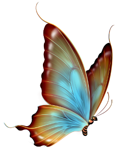 butterfly glow insect blue freetoedit