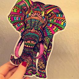 dpcpainting elepant colorful selfmade art