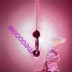freetoedit remix remixed cat catcall