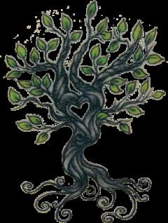 treeoflifebrelfie tree roots treeoflife freetoedit