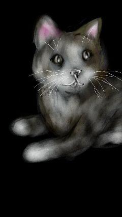 cat wdpghost darkness drawing digitalart