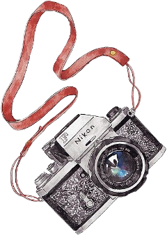 nikon camera watercolor sticker drawing