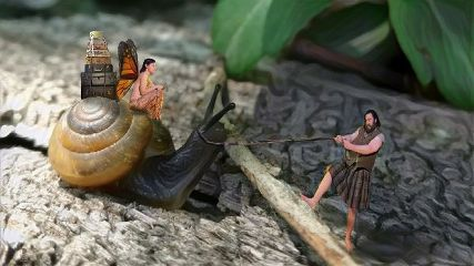 fairy snail fantasy luggage girl