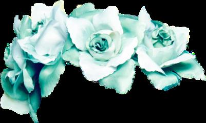цветочки венки freetoedit
