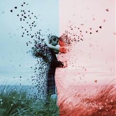 Create,an,amazing,wedding,pic,,using,the,dispersion,tool,,to,enter!,Cover,image,by,@taffyedits
