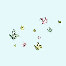 If,you,could,be,a,butterfly,,which,one,would,you,be?,Draw,It,for,a,win!