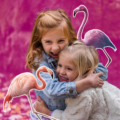 Cute girls with pink flamingos